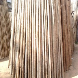 Wooden Stilt Slab posts